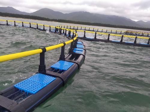 100米圆形深水网箱(挪威式)