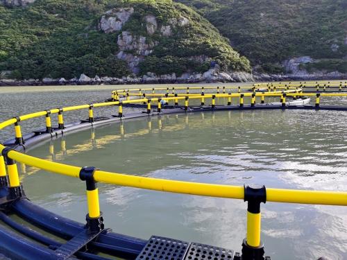52米圆形深水网箱