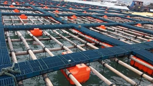 塑料渔排双管式2