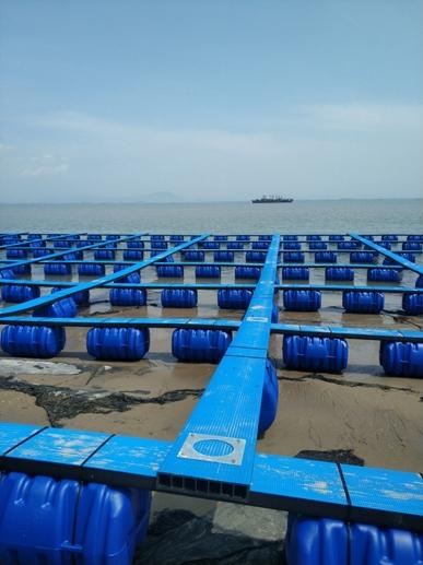 踏板式塑料渔排