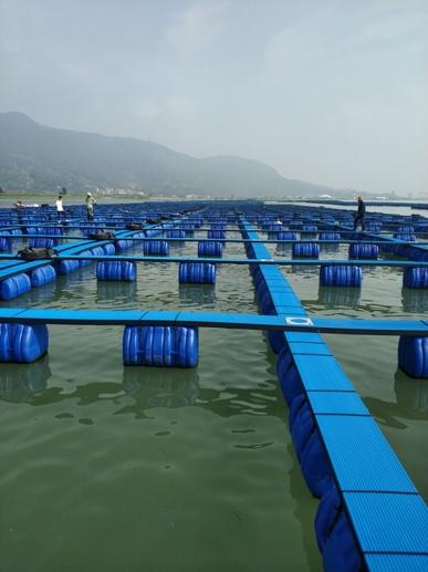 踏板式塑料渔排1
