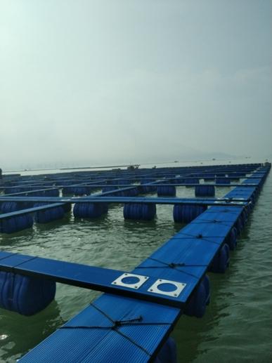 塑料渔排踏板式