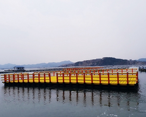 韩式深水网箱、休闲网箱1